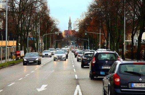 Trotz des hohen Verkehrsaufkommens und vielen Gewerbes versucht die Stadt, den Alleencharakter der Schwieberdinger Straße zu wahren.      Trotz des hohen Verkehrsaufkommens und vielen Gewerbes versucht die Stadt, den Alleencharakter der Schwieberdinger Straße zu wahren.      Trotz des hohen Verkehrsaufkommens und vielen Gewerbes versucht die Stadt, den Alleencharakter der Schwieberdinger Straße zu wahren.      Trotz des hohen Verkehrsaufkommens und vielen Gewerbes versucht die Stadt, den Alleencharakter der Schwieberdinger Straße zu wahren.      Trotz des hohen Verkehrsaufkommens und vielen Gewerbes versucht die Stadt, den Alleencharakter der Schwieberdinger Straße zu wahren.   rotz des hohen Verkehrsaufkommens und vielen Gewerbes versucht die Stadt, den Alleencharakter der Schwieberdinger Straße zu wahren.      Trotz des hohen Verkehrsaufkommens und vielen Gewerbes versucht die Stadt, den Alleencharakter der Schwieberdinger Straße zu wahren.      Trotz des hohen Verkehrsaufkommens und vielen Gewerbes versucht die Stadt, den Alleencharakter der Schwieberdinger Straße zu wahren.      Trotz des hohen Verkehrsaufkommens und vielen Gewerbes versucht die Stadt, den Alleencharakter der Schwieberdinger Straße zu wahren.      Trotz des hohen Verkehrsaufkommens und vielen Gewerbes versucht die Stadt, den Alleencharakter der Schwieberdinger Straße zu wahren.      Trotz des hohen Verkehrsaufkommens und vielen Gewerbes versucht die Stadt, den Alleencharakter der Schwieberdinger Straße zu wahren.  Der Alleencharakter der Schwieberdinger Straße soll gewahrt bleiben. Foto: factum/Granville