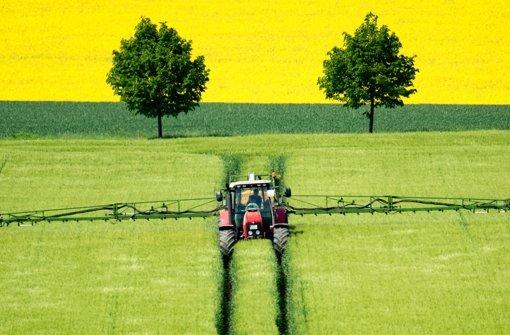 Strahlend gelbe Felder verlieren an Reiz