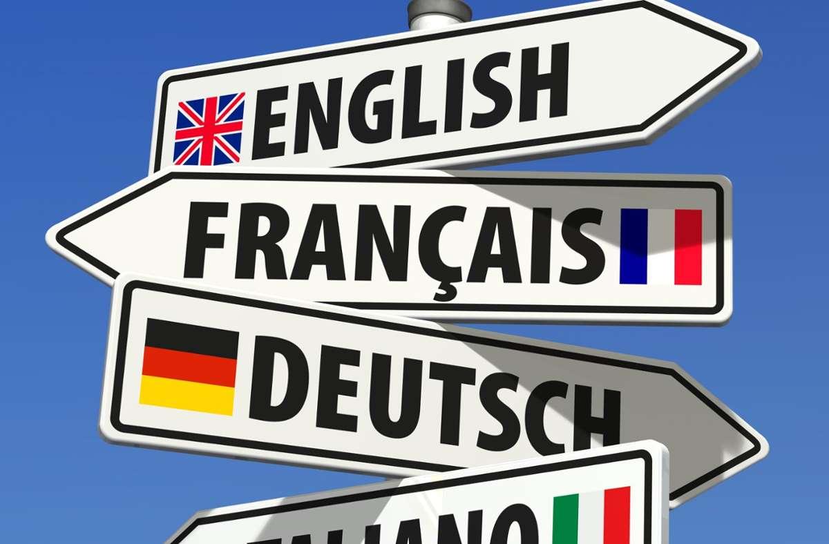 Über den Tellerrand hinaus: Sindelfingen beteiligt sich wieder an der Europawoche. Foto:
