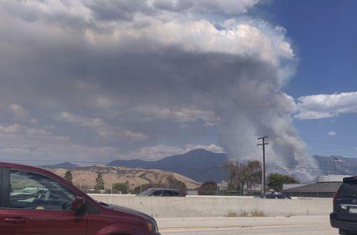Feuerwerkskörper löst Waldbrand aus