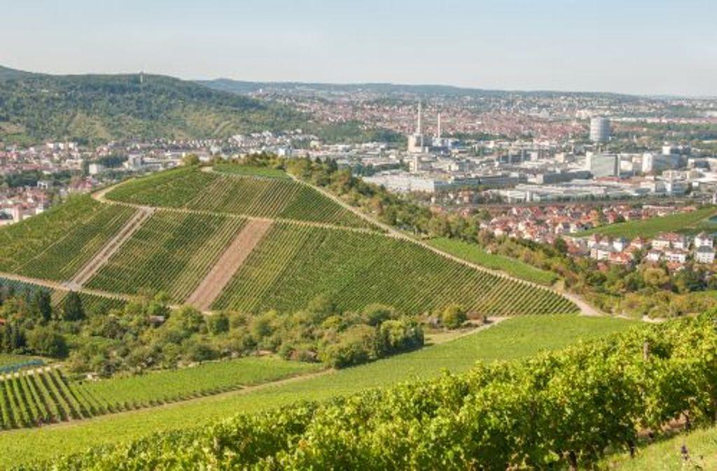 Der hübsche, rund 2800 Seelen zählende Weinbauort Uhlbach ist ein Stadtteil Stuttgarts und Ausgangspunkt unserer Radtour. Foto: Shutterstock/Santhosh Varghese