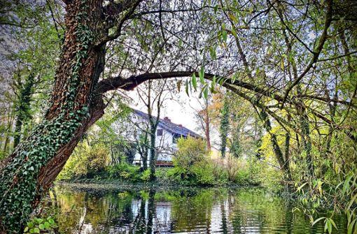 Der Stadtrand rückt zum  Riedsee vor
