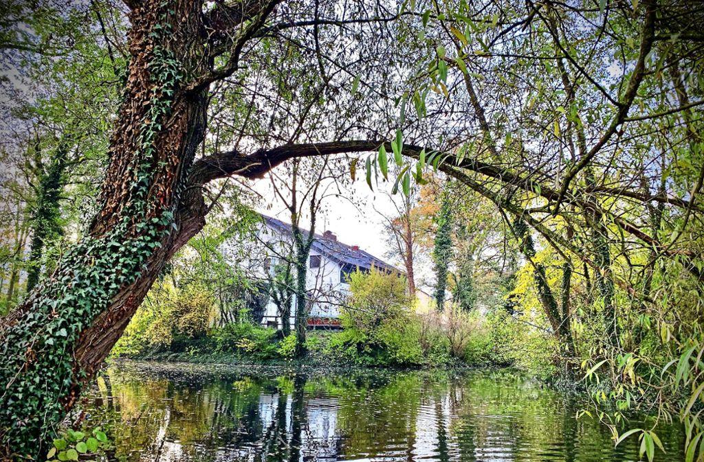 Idyllisch liegt die Gaststätte am Riedsee. Nach drei Jahren muss sie voraussichtlich Wohnungen weichen. Foto: Götz Schultheiss