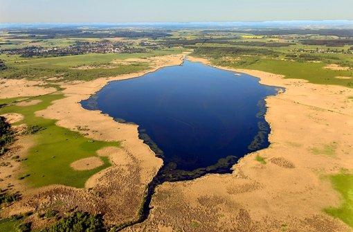 Durch die Anhebung des Wasserspiegels soll das Ried wiedervernässen