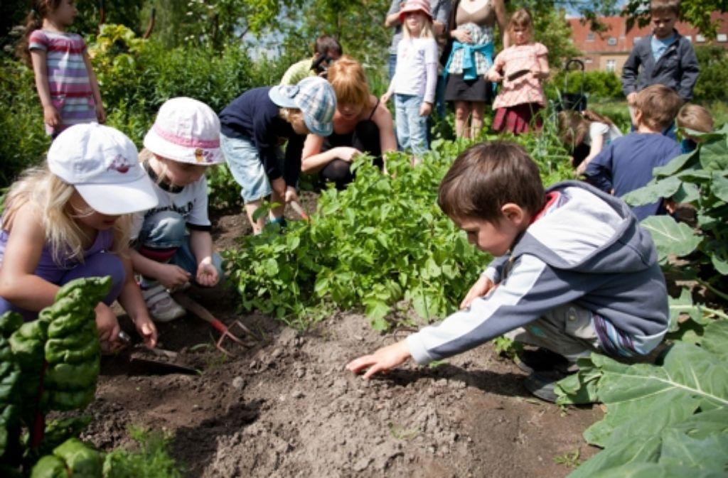 Kinder begeistern sich für das Gärtnern – mit neuen und alten Sorten. Foto: dpa