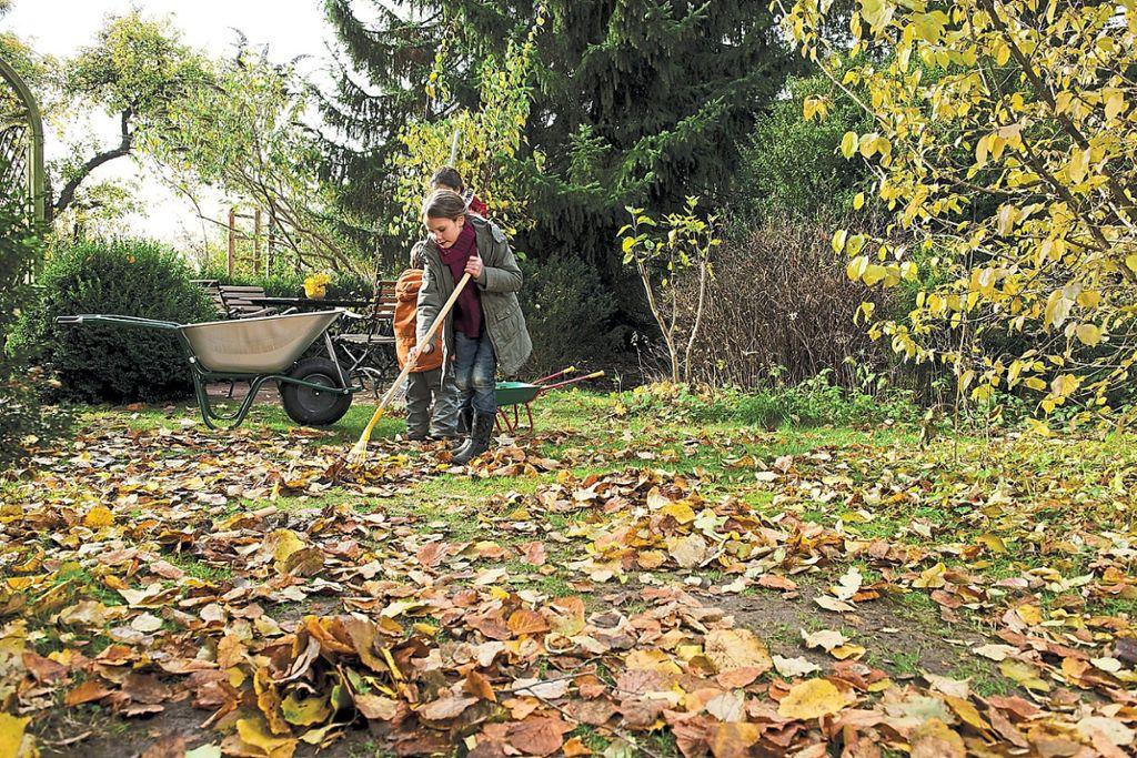Ein schöner Rasen will auch im Herbst gepflegt sein. Laub harken, Rasen mähen und düngen sorgen dafür, dass die Gräser gut über den Winter kommen.   Foto: Neudorff/txn