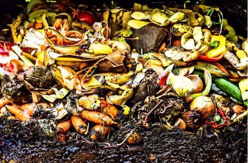 Ein Hoch auf den Kompost!