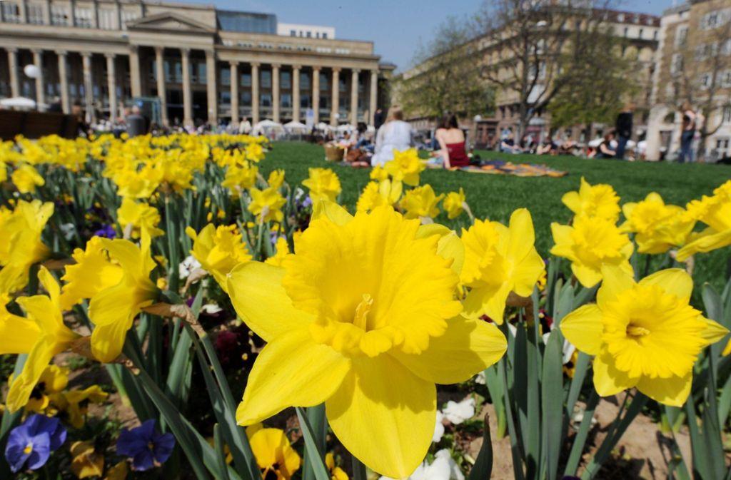Zu Ostern werden Temperaturen über 20 Grad erwartet – da lässt es sich auf den Grünflächen rund um den Stuttgarter Schlossplatz gut aushalten. Foto: dpa