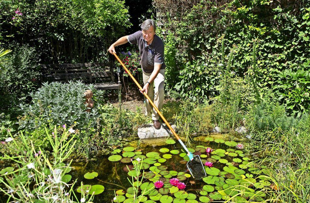Mag's grün: Frank Rebholz in seinem großen Garten. Foto: factum/Archiv