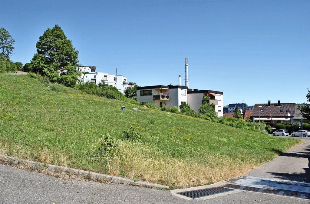 Das städtische Grundstück Jägerhalde 83 soll ab nächstem Frühjahr bebaut werden. Hier entsteht eine Kindertagesstätte für 55 Jungen und Mädchen. Foto: Elke Hauptmann