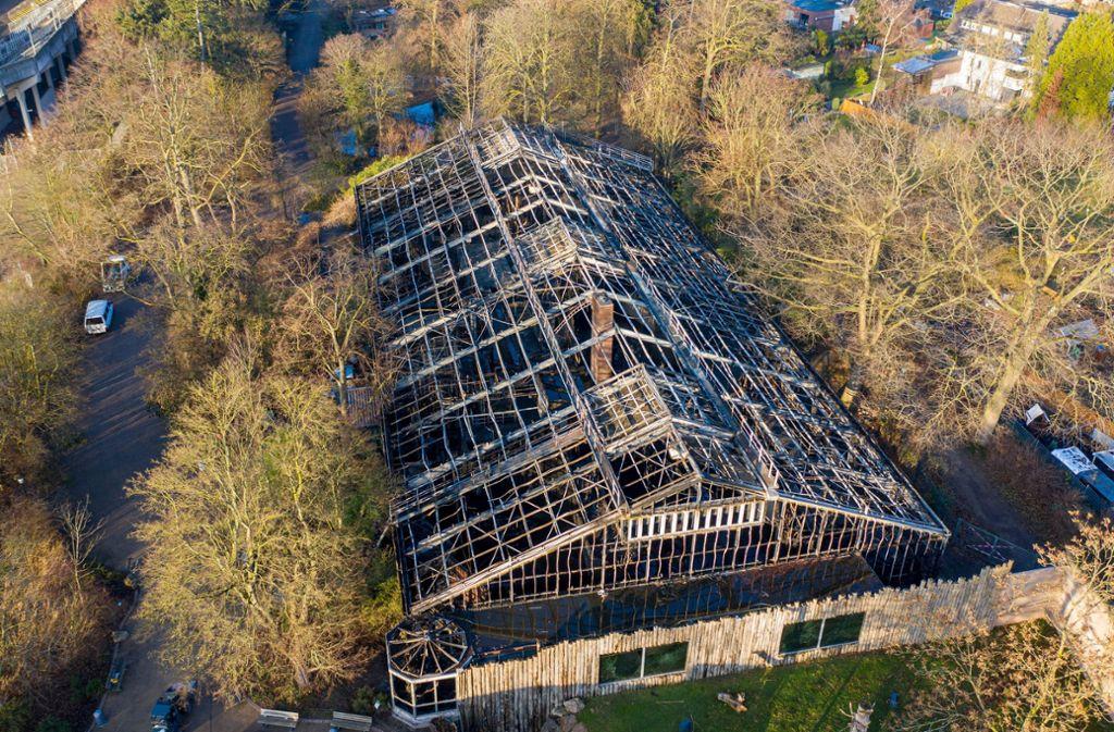 Das ausgebrannte Affenhaus des Krefelder Zoos am Tag nach dem verheerenden Brand. Foto: dpa/Christoph Reichwein