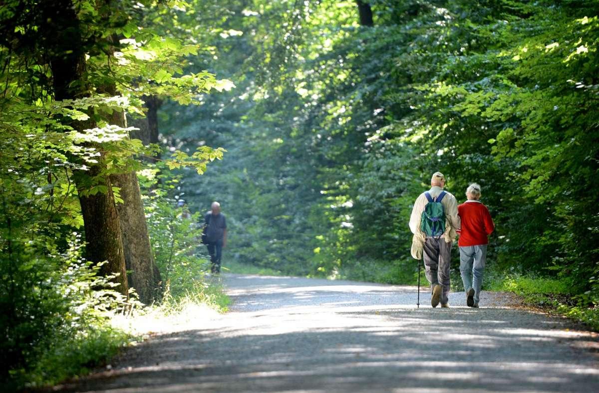 US Army Garrison Stuttgart ruft Waldbesucher dringend dazu auf, die Warnschilder zu beachten. Foto: dpa/Franziska Kraufmann