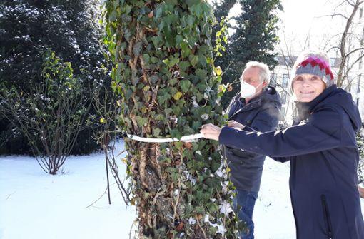 Anwohner wollen  Bäume vor der Kettensäge retten