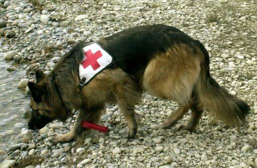 Suchhunde finden toten Schwimmer im Rhein