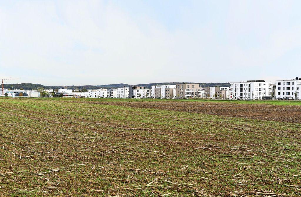 Dem neuen Baugebiet muss viel Ackerland weichen. Das betrachtet das Landratsamt als kritisch. Foto: factum/Jürgen Bach