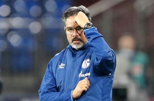Warum beim FC Schalke alles schief läuft