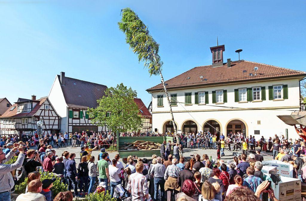Als der Maibaum in Eltingen 2017 aufgestellt wurde, war schönes Wetter. Wird das wieder so sein? Foto: factum/Archiv