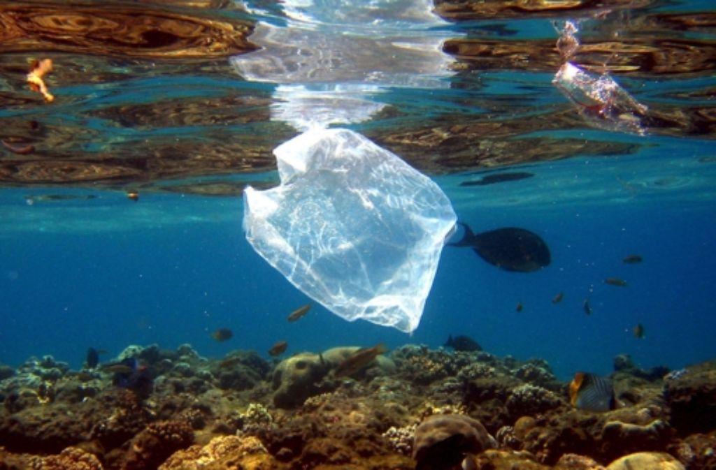 Im Meer werden durch Umwelteinflüsse Plastiktüten in winzige Partikel zerteilt. Foto: dpa