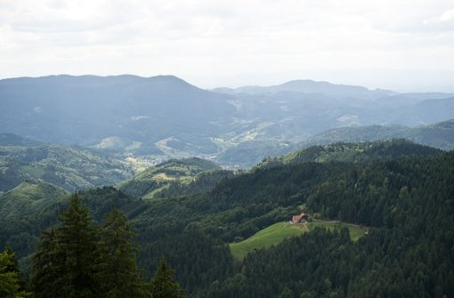 Auch der Schwarzwald ist ein beliebtes Urlaubsziel. Foto: dpa