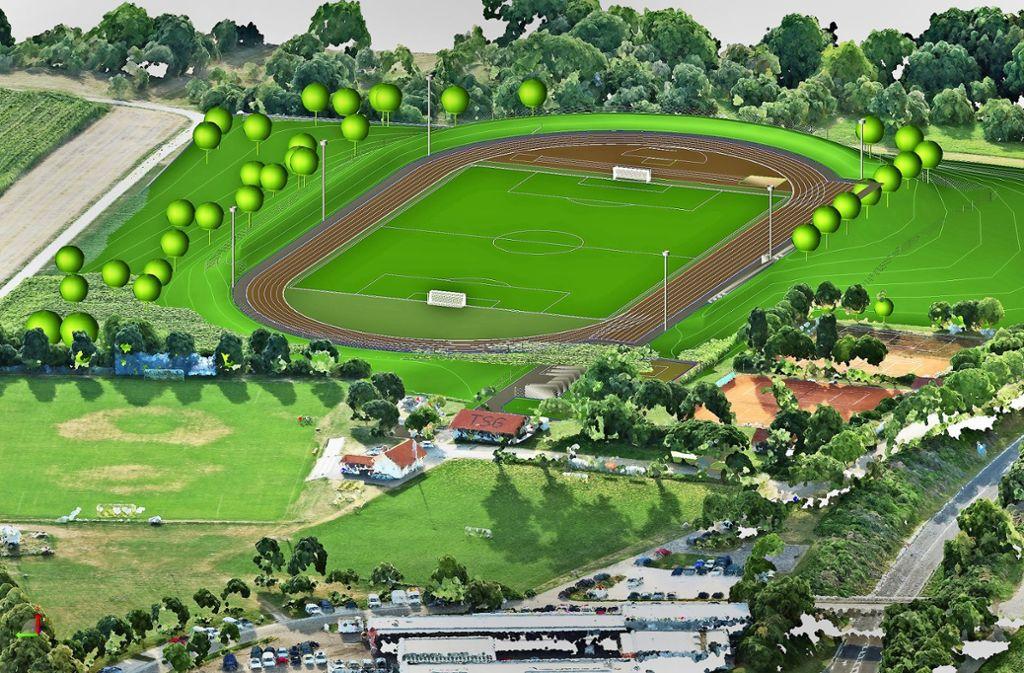 Auf dem sogenannten Zeller Berg, in der Verlängerung des  TSG-Geländes an der Landstraße zwischen Bad Boll und Aichelberg, könnte der neue Sportplatz entstehen. Foto: Saidi 'sign