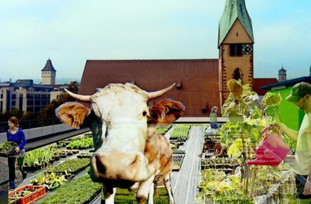 So ähnlich – aber ohne Kuh – könnte es beim Züblin-Parkhaus bald aussehen. Foto: privat