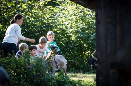 Jugendfarmen und Spielplätze schlagen Alarm