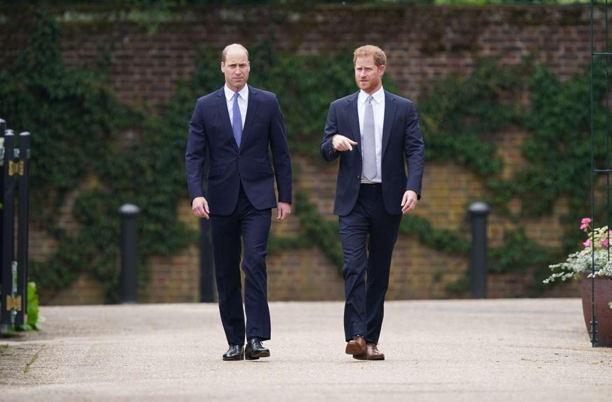 Prinz William (links) und sein Bruder Harry bei der Zeremonie. Foto: dpa/Yui Mok