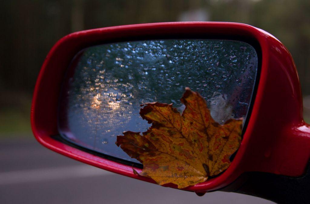Auch der Gesamtverband der Versicherungswirtschaft warnt vor Gefahren auf der Straße im Herbst. Foto: GDV