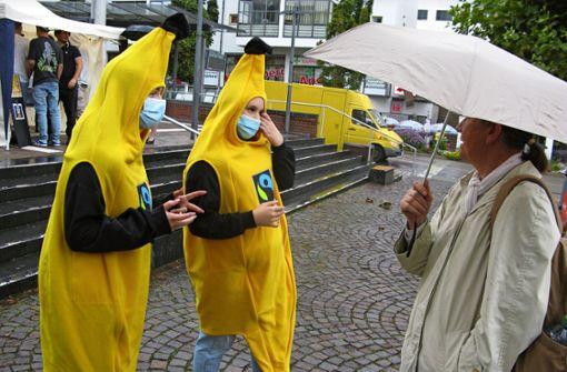 Wer verdient wie viel an der Banane?