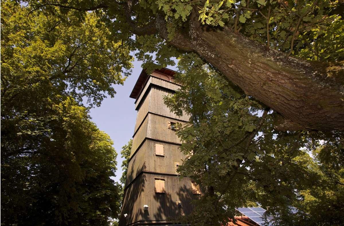 Beliebtes Ausflugsziel: die Eselsburg Foto: /Andreas Weise