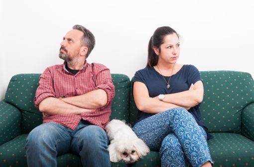 Was im Scheidungsfall aus dem Haustier wird