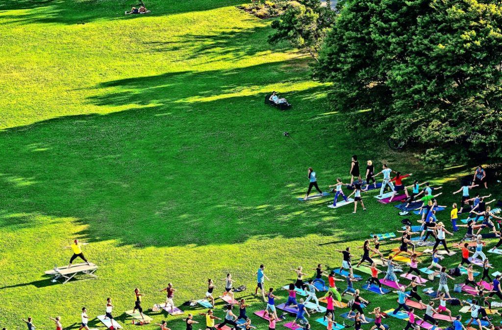 Yoga im Stadtgarten bei der Uni:    Lehrerin Doris Trapmann lädt alle Stuttgarter     montags um 17.30 Uhr   zu einer Stunde auf der Matte ein Foto: Julius Ise/ www.dreamteamfitness.de