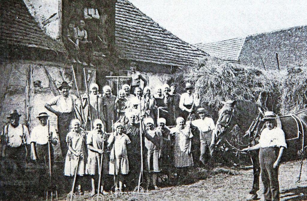 Die Landwirtschaft war in Denkendorf von großer Bedeutung. Dieses Bild von 1931 zeigt die vielen Helfer, die für die Heuernte notwendig waren. Foto: Horst Rudel