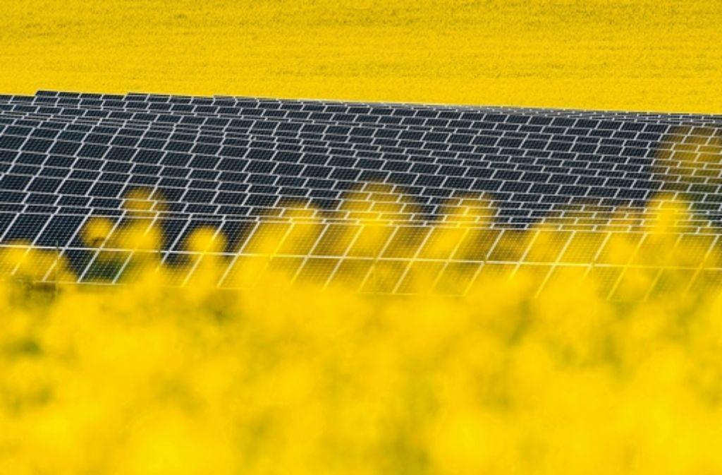 Moderne Landwirtschaft: eine Solaranlage mitten im Rapsfeld Foto: dpa