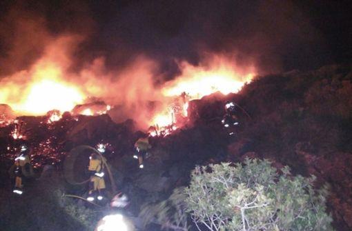 Waldbrand zerstört 75 Hektar