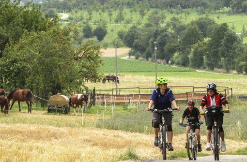 Auf der Tier-Tour der Landwirtschaft näher kommen