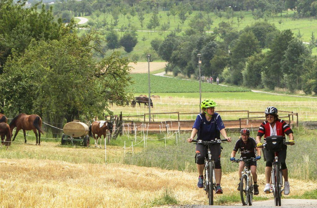 Mit dem Fahrrad lässt sich die Landschaft im Kreis ganz sportlich erkunden, und nebenbei erfährt man noch allerhand über die Landwirtschaft. Foto: factum