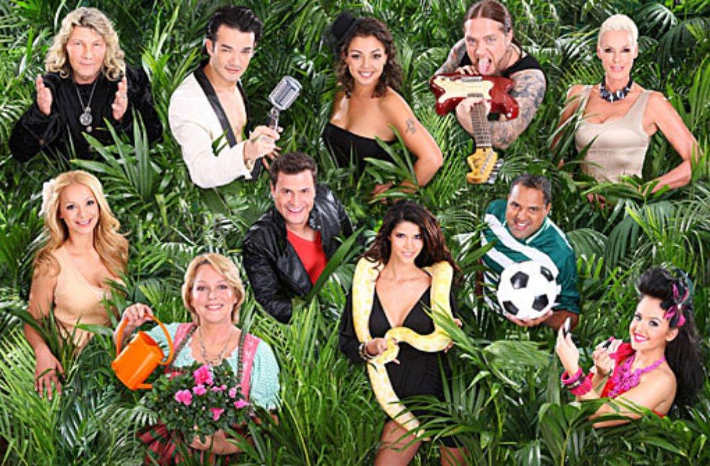 Am Freitagabend startet die sechste Staffel der RTL-Show Ich bin ein Star - holt mich hier raus. Und diese elf B- und vor allem C-Promis machen mit. Hier die Dschungelcamp-Bewohner im Einzelnen - klicken Sie sich durch unsere Bildergalerie: Foto: RTL/Stefan Gregorowius
