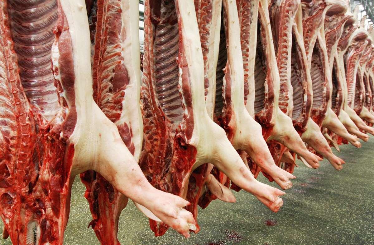 Erstmals unterstützt das Landwirtschaftsministerium  eine mobile Schlachteinheit für Schweine. (Symbolfoto) Foto: dpa/Ronald Wittek