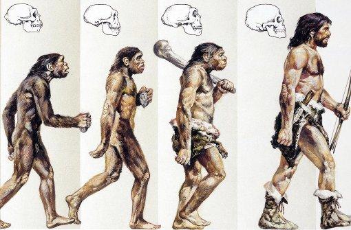 Vorfahren aus der Steinzeit