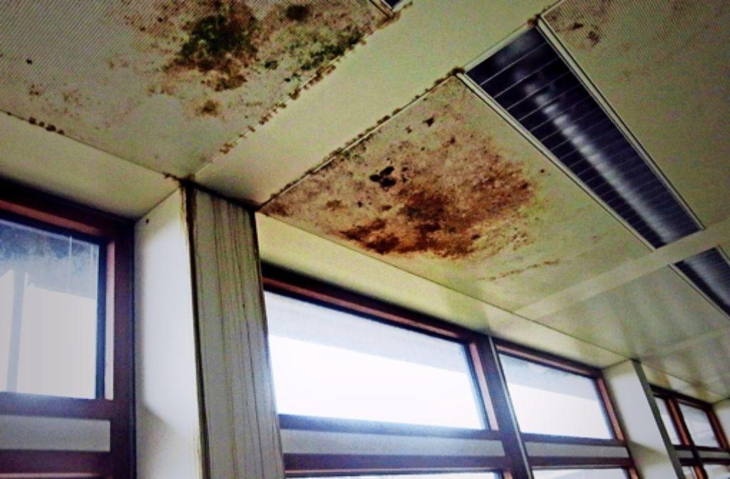 Schimmel an den Decken: der Eiermann-Campus in Vaihingen ist in einem schlechten Zustand. Foto: Oliver Sorg