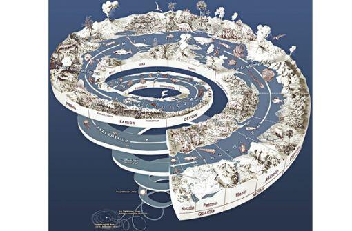 Massensterben in der Urzeit ermöglichte heutiges Leben