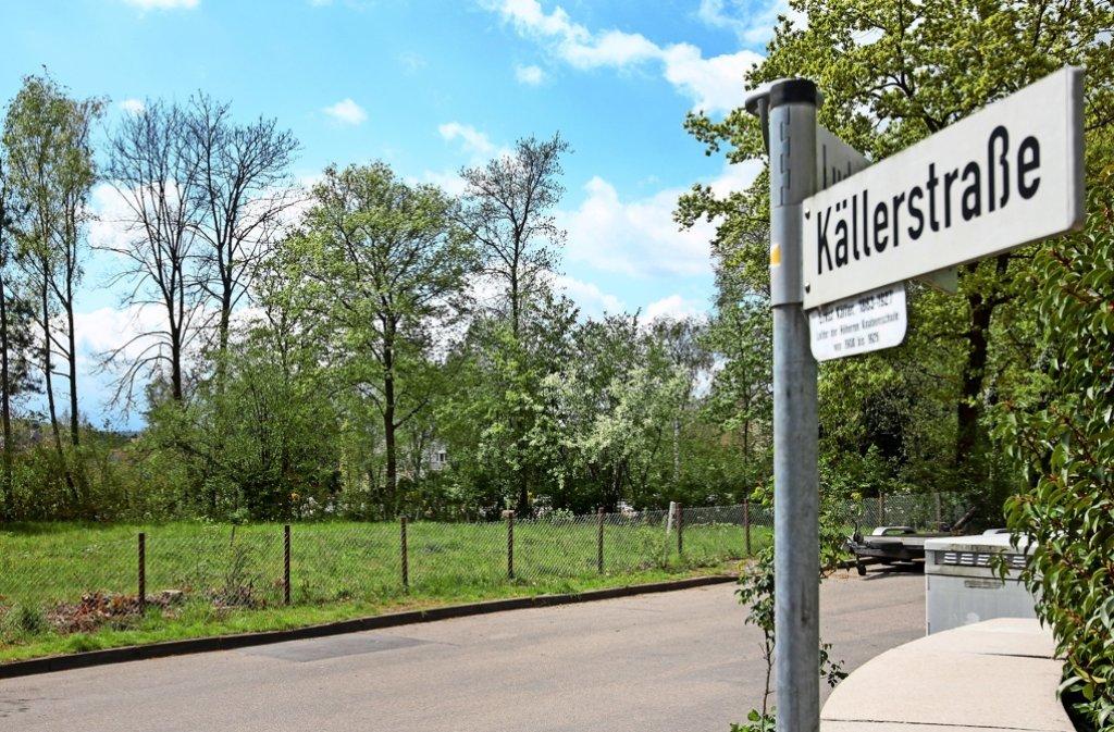 Hier beim Korntaler Friedhof soll die Flüchtlingsunterkunft entstehen. Foto: factum/Granville