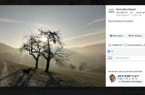 Diese Facebook-Seiten sollten Sie kennen