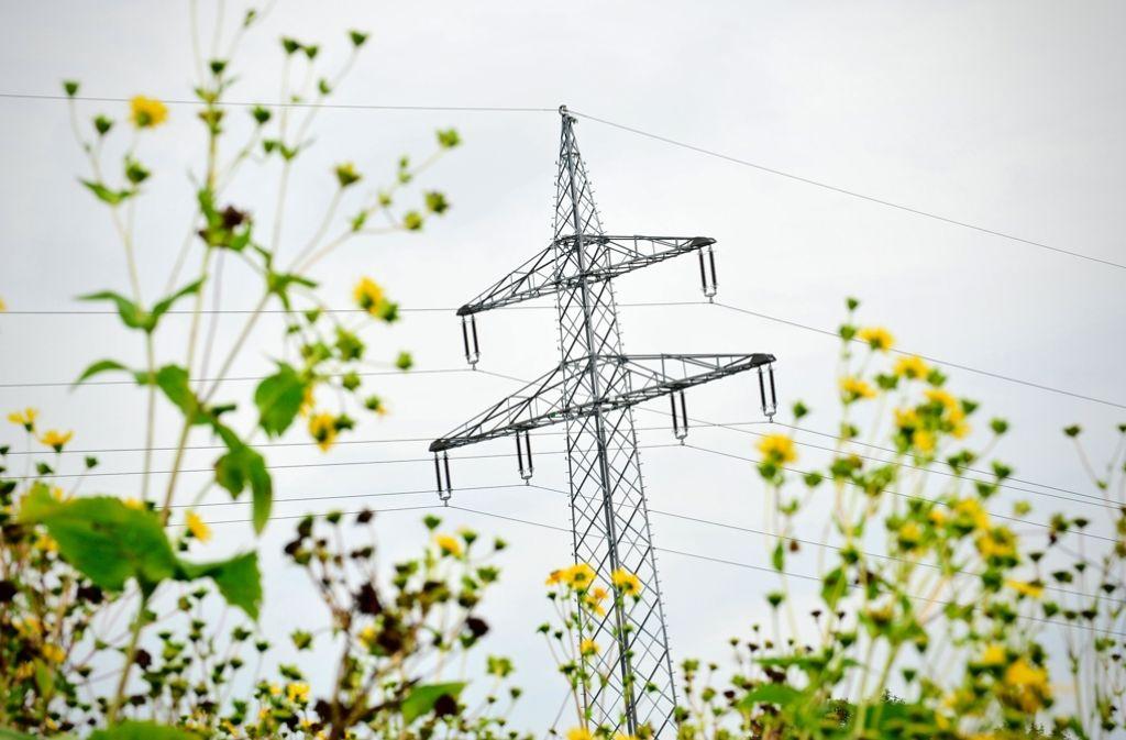 Die Stadtwerke Winnenden kaufen die örtlichen Stromleitungen. Foto: dpa