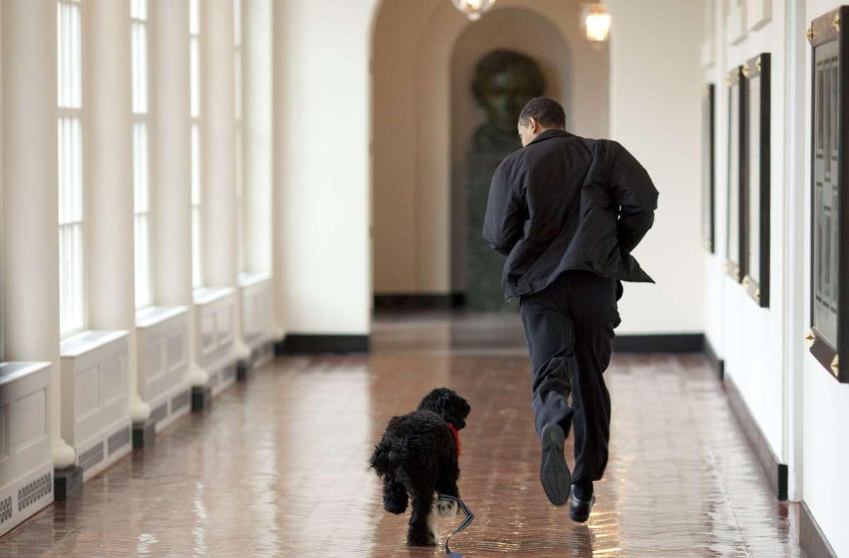 Pete Souza, der offizielle Fotograf der Obama-Regierung, hat ikonische Fotos von Bo und den Obamas aufgenommen. Foto: AFP/Pete SOUZA