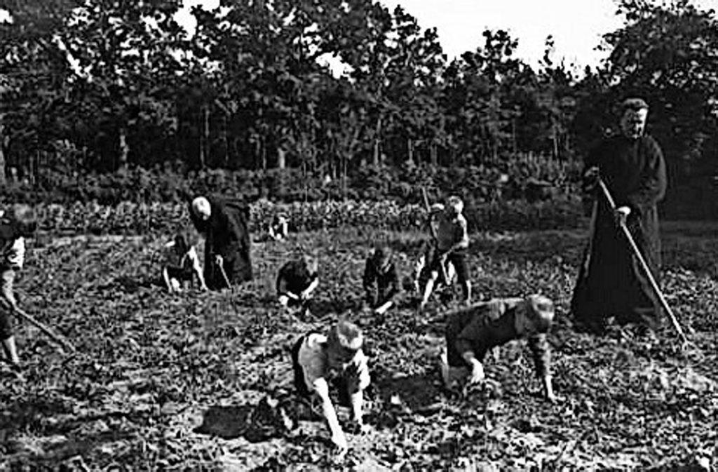 Feldarbeit war nicht nur in Korntal  Pflicht, wie dieses Bild einer Ausstellung in Stuttgart zeigt. Foto: Archiv Verein ehemaliger Heimkinder