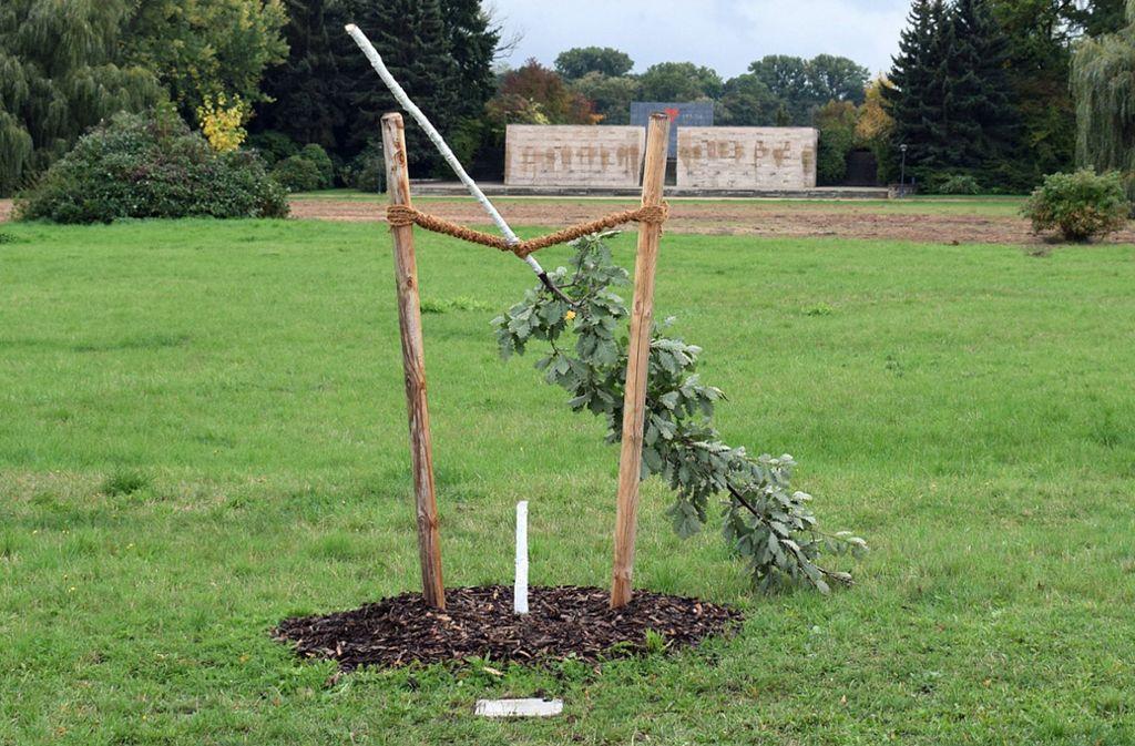 Der erst Anfang September gepflanzte Gedenkbaum sollte an den Blumenhändler Enver Simsek aus Hessen erinnern. Foto: dpa