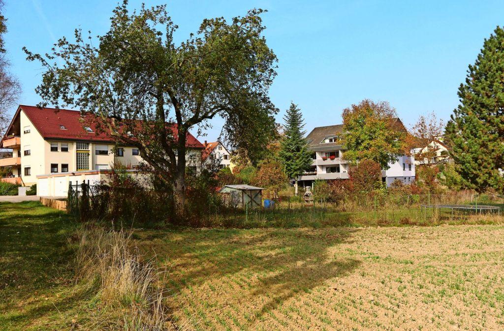 Bisher darf die Baulücke in der Grabenstraße nicht bebaut werden. Foto: Andreas Gorr
