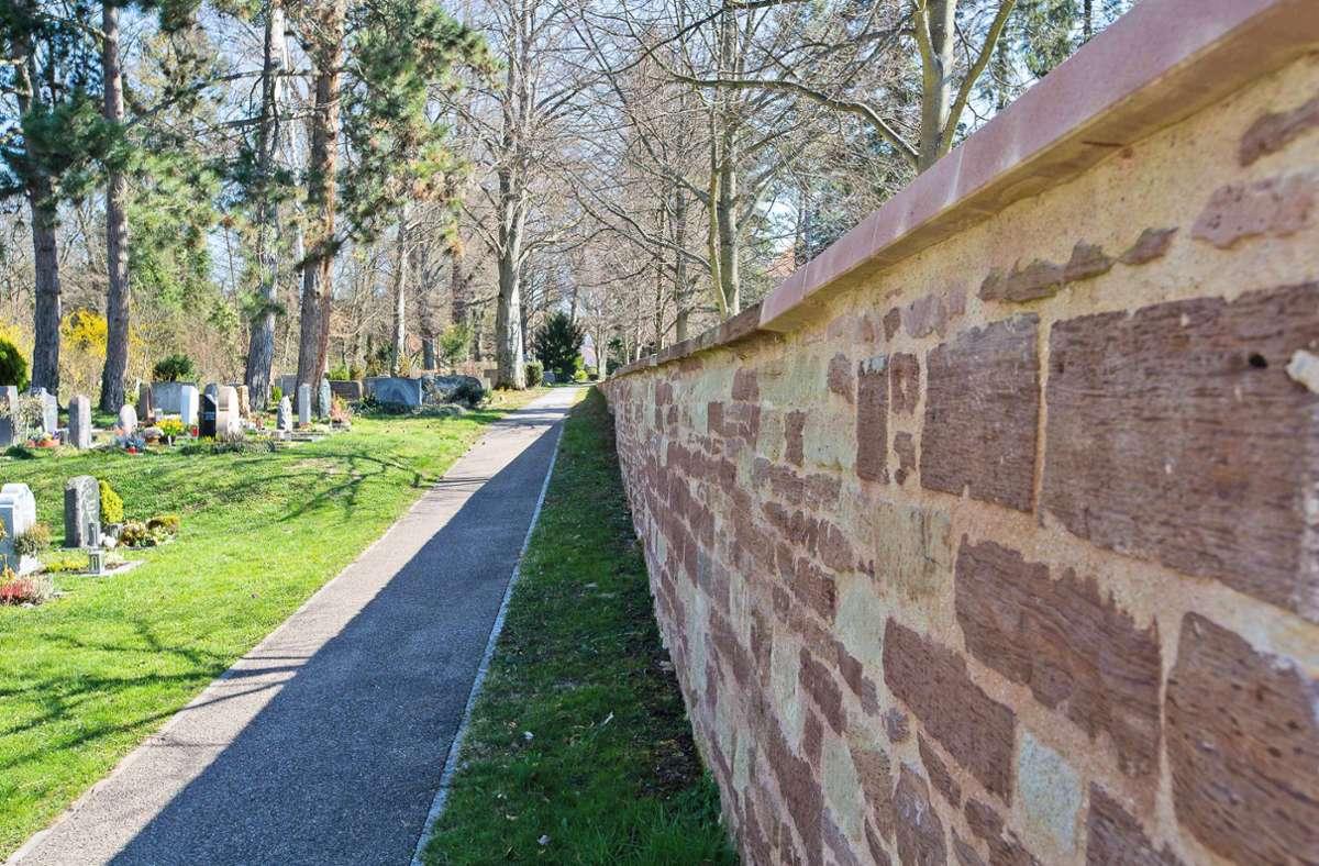 Neue Maßnahme auf dem Alten Friedhof in Böblingen. Foto: Eibner//Bürke